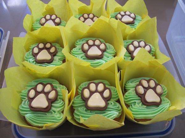 10-cupcakes