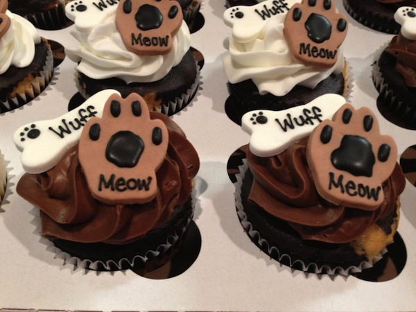 cupcakes-3-900x675