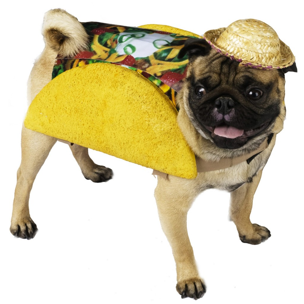 taco-pet-food-dog-costume-bc-61490