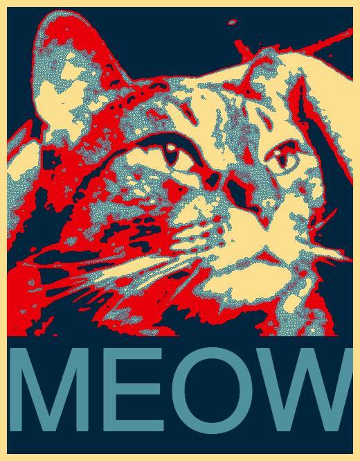 cat-for-president
