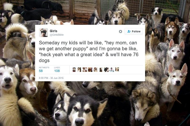 Via Twitter/Wisconsin Pet Care